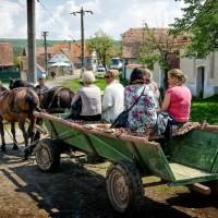 plimbare-caruta-transilvania-1000