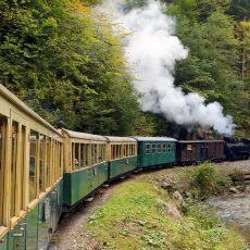 Mocanita-Steam-Train